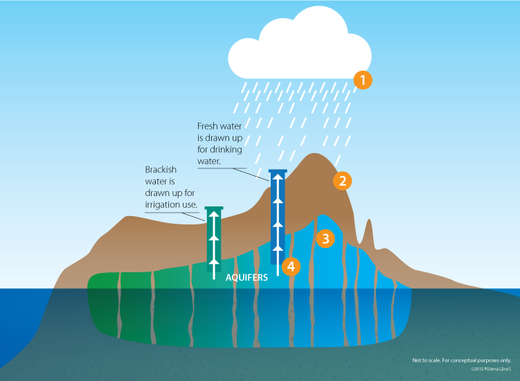 Diagram of Lanai water cycle with numbered step one white cloud raining water down to step two brown soil absorbing water to step three water collecting in underground aquifers in different shades of blue to step four water drawn up through wells